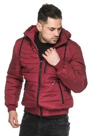 KARIANT: Мужская демисезонная куртка Бордо Ник бордо - фото 1