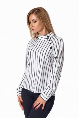 SL-Fashion: Блуза 446.1 - фото 1